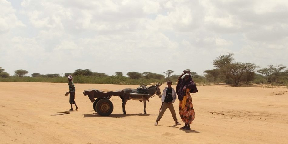 Famine's Final Blow: Somali refugees trapped by climate, politics and fatigue